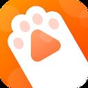 灵猫视频安卓官方版 V1.0.0