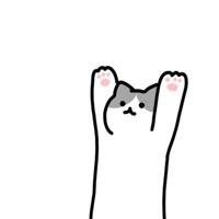空中猫咪iPhone版 V1.0.3
