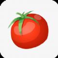 西红柿小说安卓版 V1.0.8